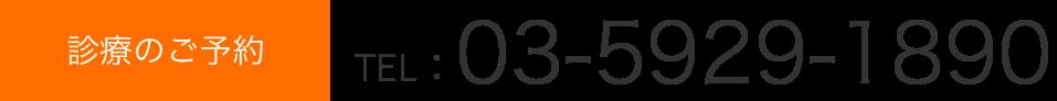 tel.03-5929-1890